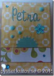 pocket letter till petra närbild1