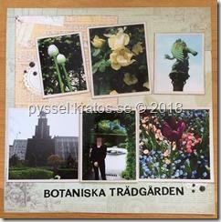 Botaniska trädgården sid 1