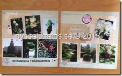 Dubbel layout botaniska trädgården
