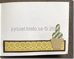 kort - namnsdagsgrattis med kaktus insida