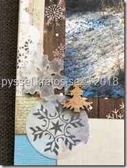Layout frost närbild1
