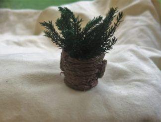 Miniatyrväxt i kruka med handtag
