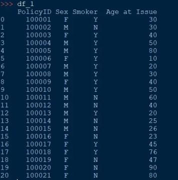 pandas dataframe just looks like an Excel spreadsheet