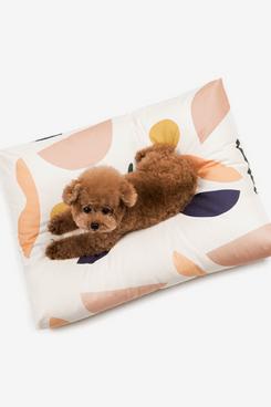 Ecowild Dog Bed : ecowild, Beds,, According, Experts, Strategist, Magazine