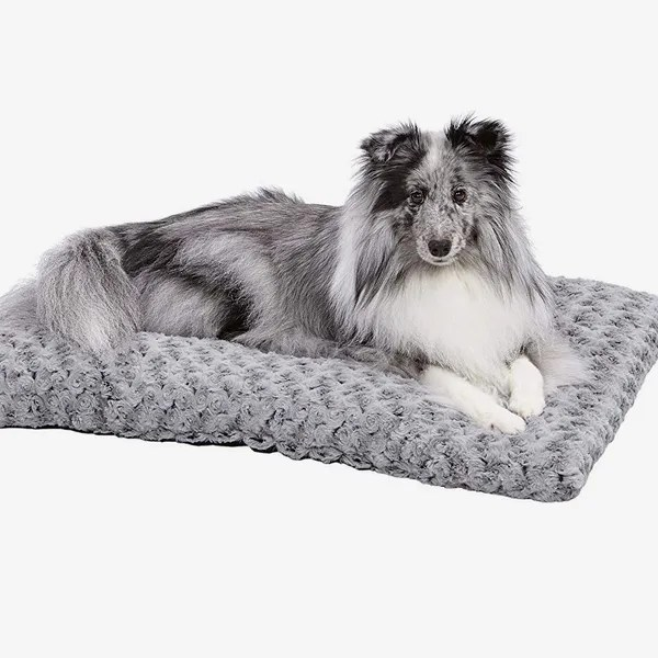 19 best dog beds 2021 the strategist