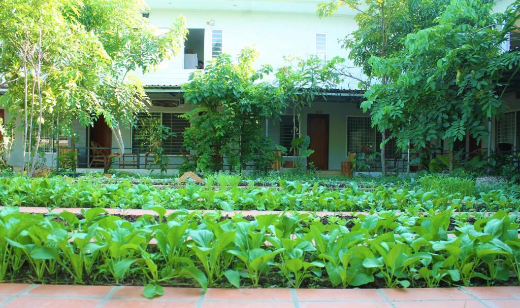 My Parents Guesthouse Kampot Cambodia Booking Com