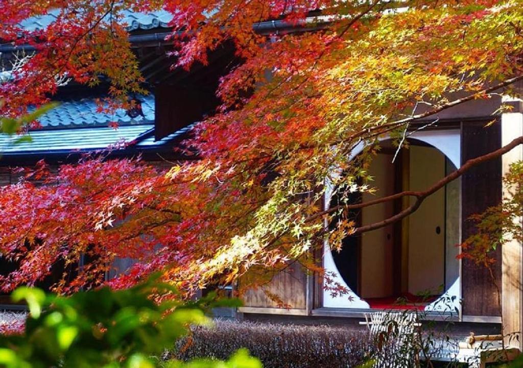 Hostel Webase Kamakura Japan Booking Com