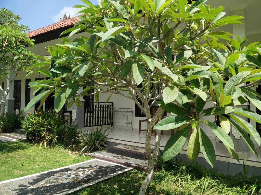 Jepun Bali Homestay Padang Padang Uluwatu Indonesia