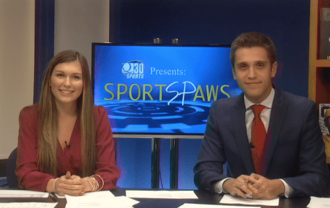 Sports Paws: 10/11/16