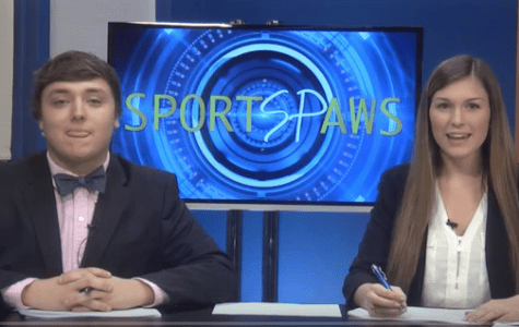 Sports Paws: 11/14/16