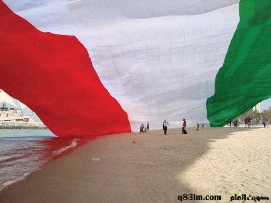 علم الكويت 1