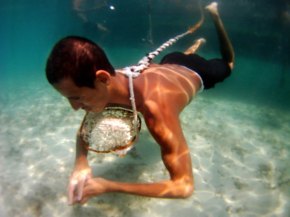 pearl diving Black pearl is the result of the experience in diving, teaching, repairing and trading technical diving equipment over the years one day in 2012 we had the.