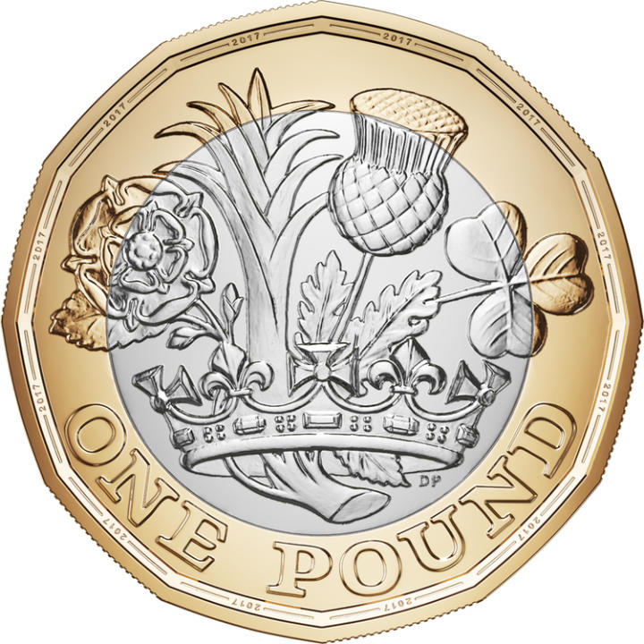 new-one-pound-coin-back