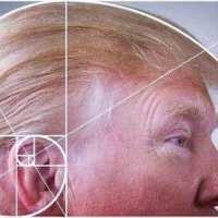 Q INFOS - D-Trump et Q+