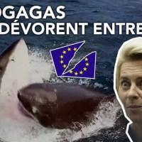 Q VIDÉOS - Bonne nouvelle : l'Union européenne en pleine crise !