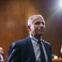Des documents nouvellement divulgués montrent que le Dr Fauci a menti, un sénateur américain commente et intervient.