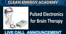 Pulsed Electronics for Brain Therapy Live Call Clean Energy Academy May 24 2020