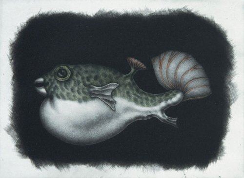 Graeme-Peebles-pufferfish I