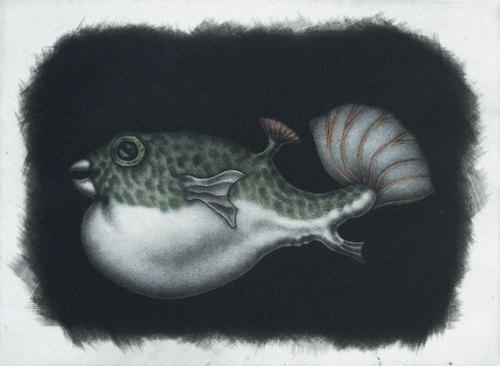 Graeme-Peebles-pufferfish I