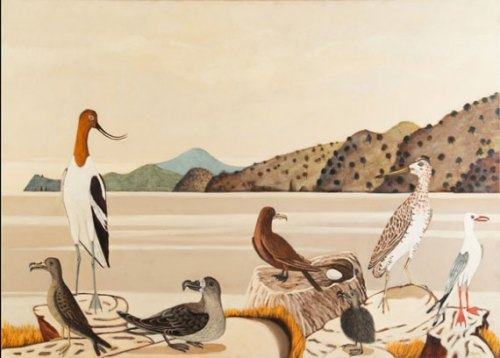 Philip-Davey-Colonial-Seabirds