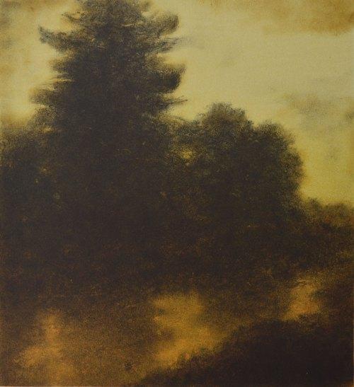 Wayne Viney Litho-River-Pine