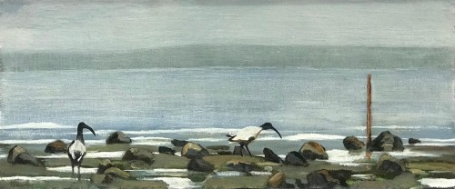 Philip Davey Ibis at Queenscliff 21 x 50