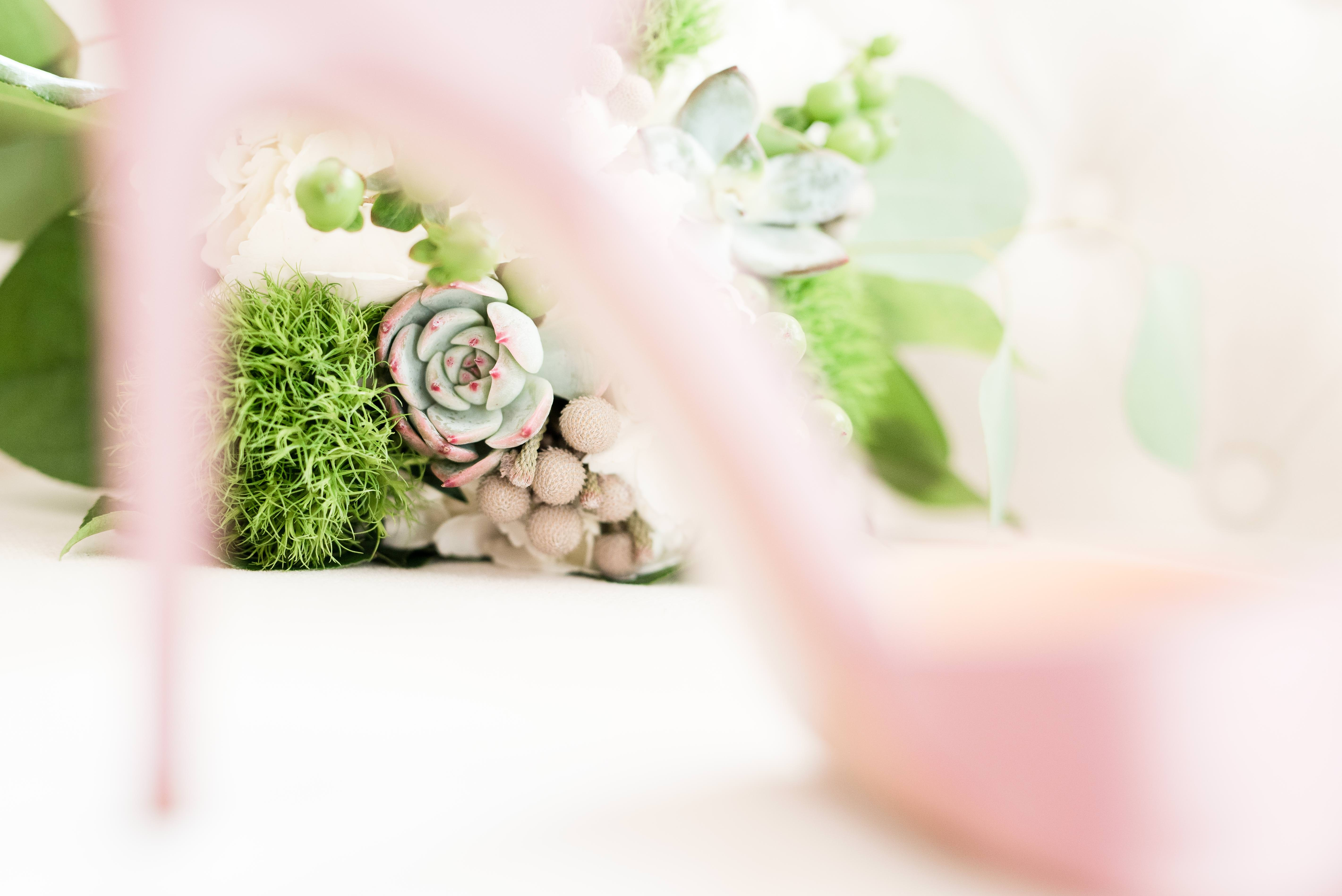 bridal bouquet ideas, weddings from Gibbet Hill in Groton, MA, Groton wedding photographer, succulent bridal bouquet ideas