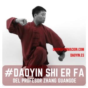 Daoyin Shi Er Fa