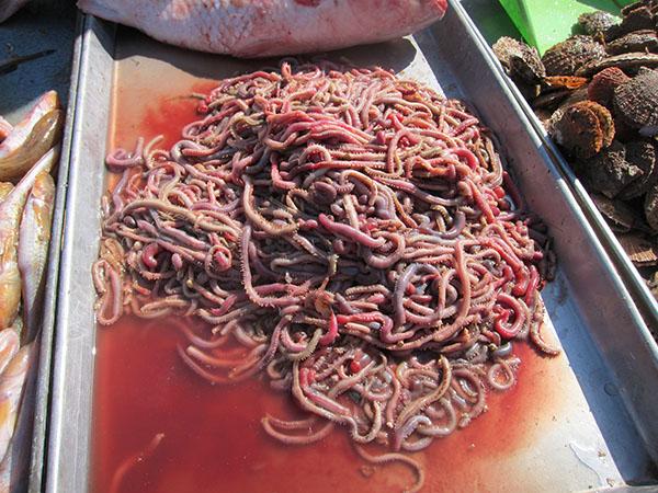 Haiyang Farmer Market Qingdao Expat