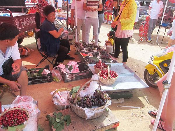 Haiyang veggie market Qingdao day trip