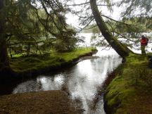 James Creek at the lagoon