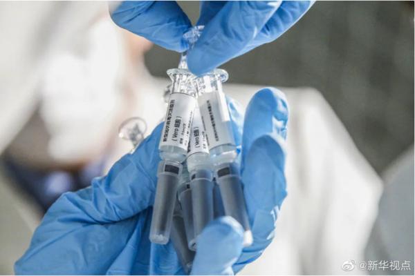 10月4日,美国首都华盛顿,2万把椅子摆放在白宫外南侧草坪上,悼念美国超过20万新冠逝者。