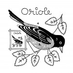 Q is for Quilter » Blog Archive » Quilt of Birds Pattern