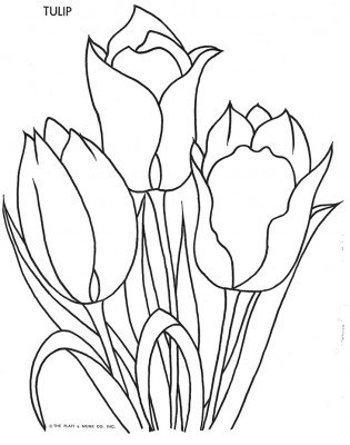 Flowers to Color