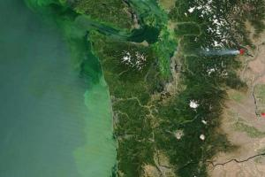 Quinault Algal Bloom Project
