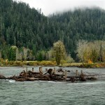 Quinault Permits Department | Quinault Division of Natural Resources