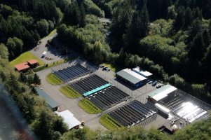 Quinault Hatcheries Program | Quinault Fisheries Deparment