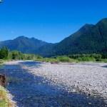 Quinault River Restoration Project | Quinault Projects