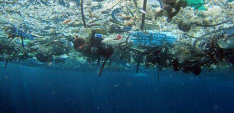 Marine Debris   Quinault Marine Resources Program