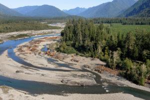 Quinault River Restoration Project