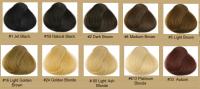 Hair Color Chart  Qlassy Hair Extensions