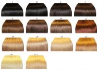Hair Color chart #2  Qlassy Hair Extensions