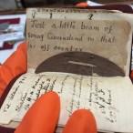 Diary with Eucalyptus leaf from Australia