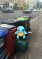 Squirtle on Great Western Road (Firenze Glanfield)