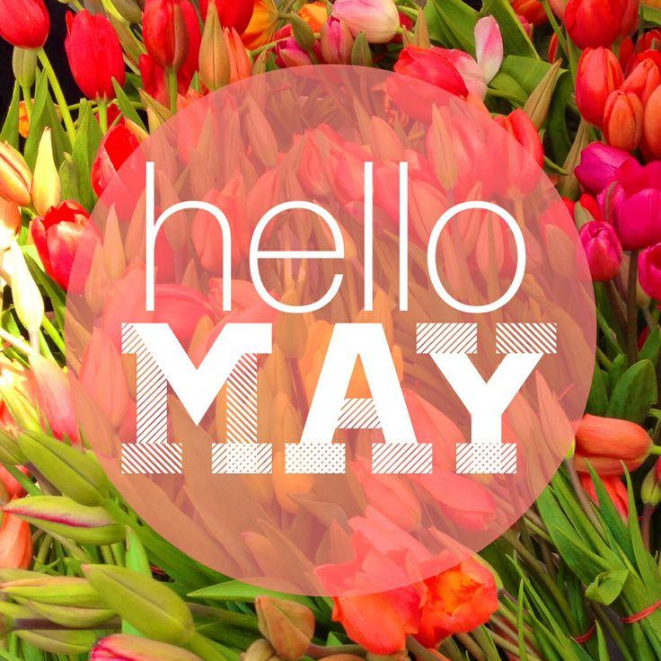 Hello_May_Cute.jpg