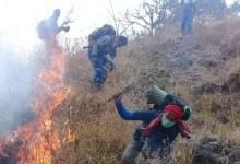 Photo of Musim Kemarau, Masyarakat NTB Diminta Ikut Jaga Hutan Dari Kebakaran.