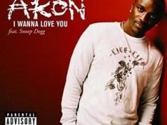 Akon I Wanna Love You (ft. Snoop Dogg)