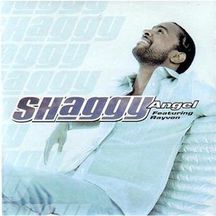 Shaggy Angel (ft. Rayvon)