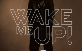 Avicii Wake Me Up