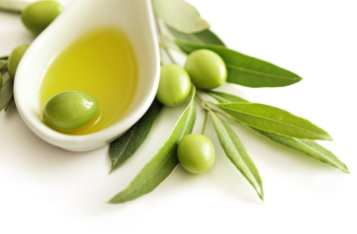 minyak-zaitun-olive-oil